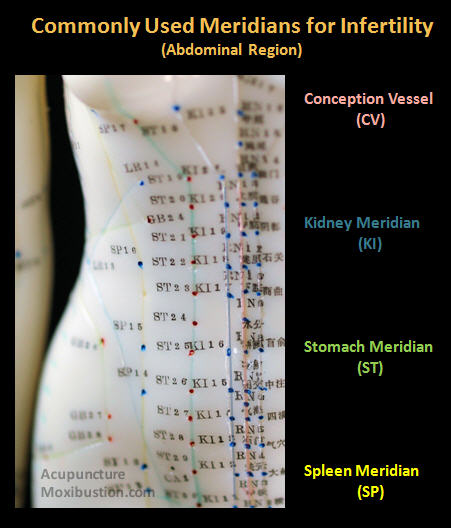Fertility Acupuncture Channels and Points (female abdomen)